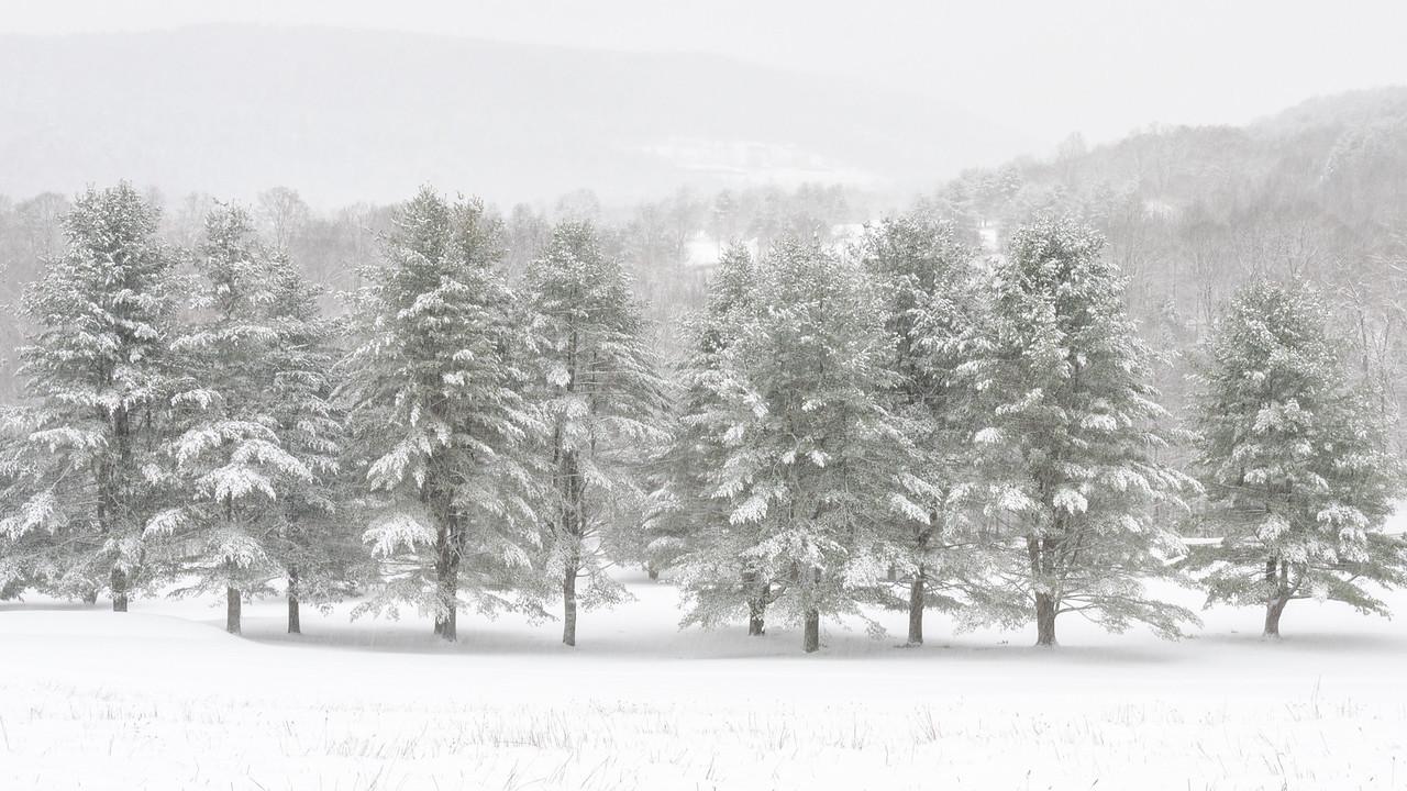 Vermont Snowfall