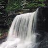 Ricketts Glenn Waterfall