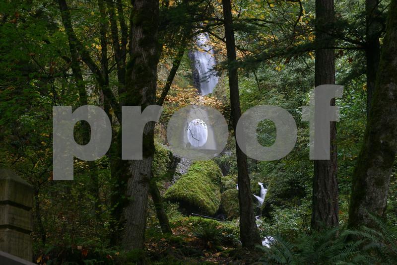 Wahkeena Falls in Autumn, Columbia River Gorge, Oregon 17