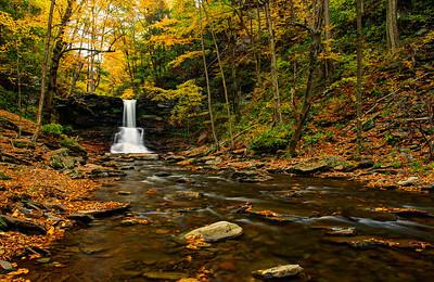 Sheldon Reynolds Falls