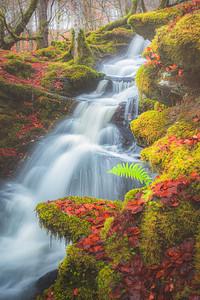 Falls of Moness, Scotland