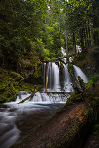 Lower Panther Creek Falls