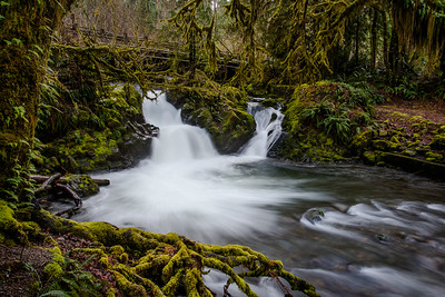 Falls Creek Falls in Quinault, Washington