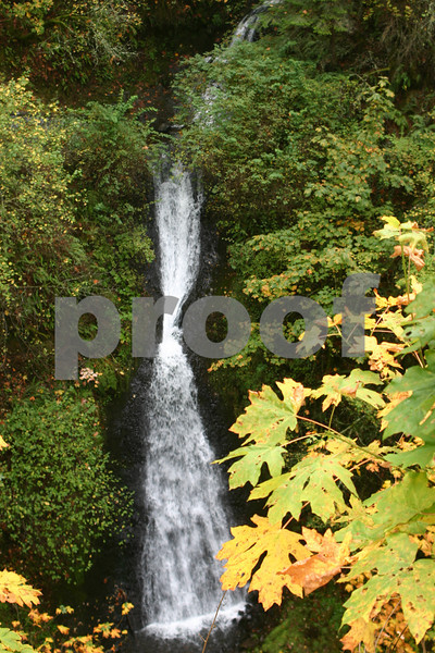 Shepherds Dell Falls, Columbia River Gorge, Oregon 16