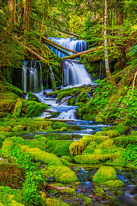 """Sanctuary,"" Big Spring Creek Falls, Gifford Pinchot National Forest, Washington"