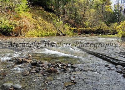 Hidden Brook - Sprague Brook Park - 5 x 7