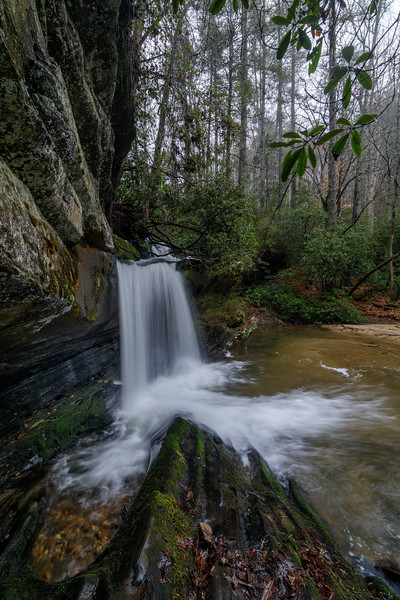 Winter at Raper Creek