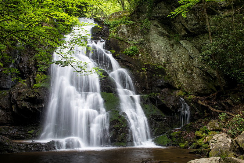Spring morning at Spruce Flats Falls in the Tremont area of Great Smoky Mountain National Park