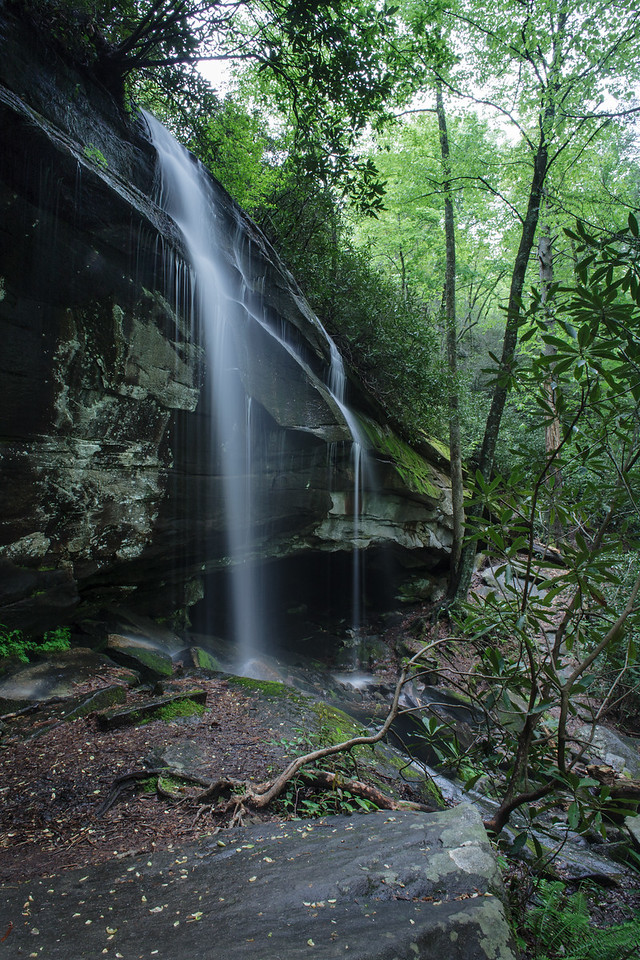 IMAGE: https://photos.smugmug.com/Waterfalls/i-Bwgw9P6/0/58f1643a/X2/IMG_5964-20090506-X2.jpg