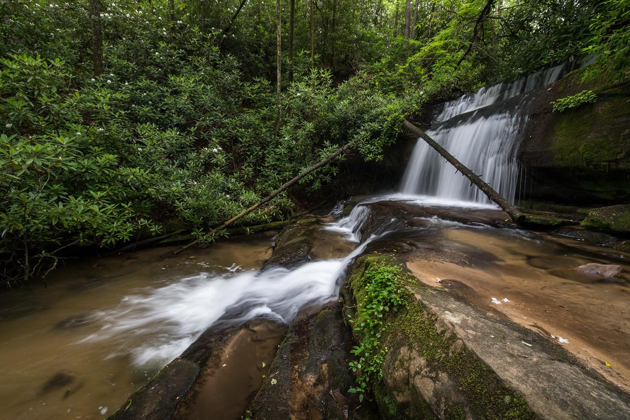 IMAGE: https://photos.smugmug.com/Waterfalls/i-FPNPrcw/0/b49c59ab/X2/IMG_17750-170625-X2.jpg