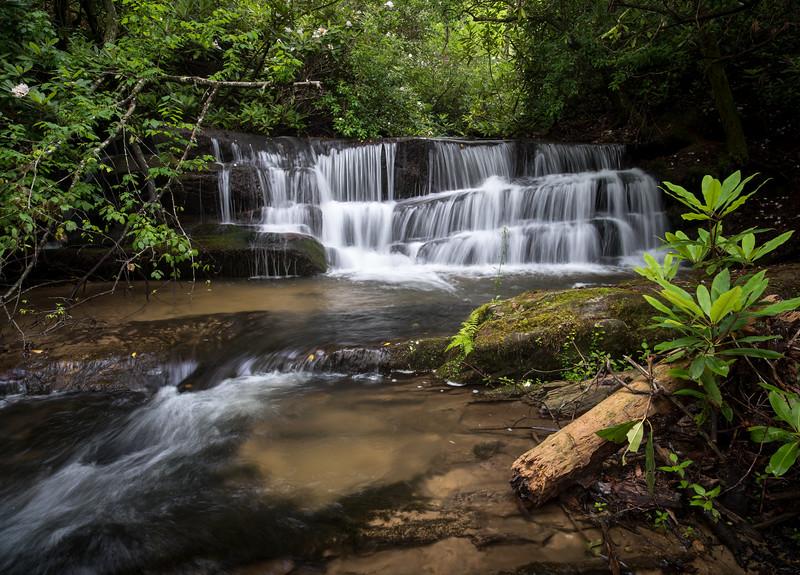 Great Laurel at Lower Crow Creek Falls