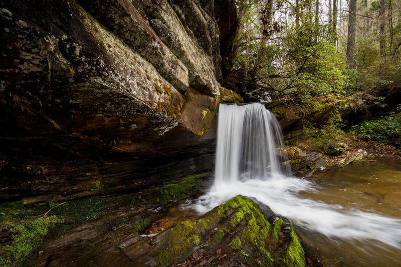Rock Formations at Raper Creek Falls