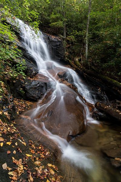Fallen Leaves at Log Hollow Falls