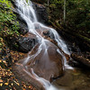 Fallen Leaves at Log Hollow Falls