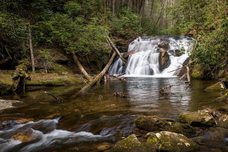 Early Spring on Duke's Creek