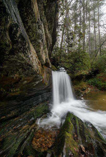 Rainy Winter Day at Raper Creek