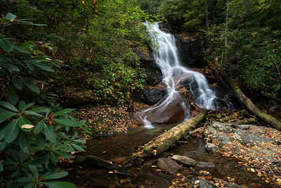 Falling Water and Fallen Leaves