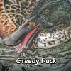 Greedy Duck