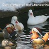 Conference of the Mandarins