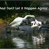 A Dont Let It HappenAgain 2 25 06 PM