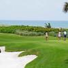 DSC04424 David Scarola Photography, Palm Beach Par 3
