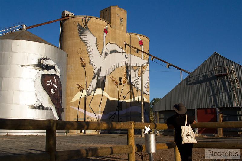 silo art trails