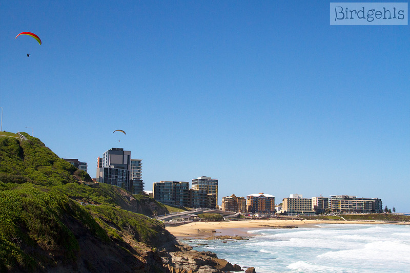 things to do in newcastle nsw