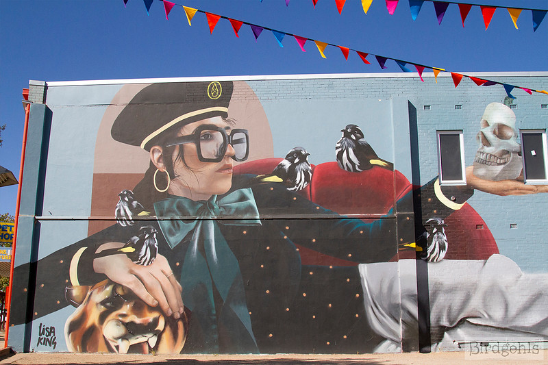 benalla street art lisa king