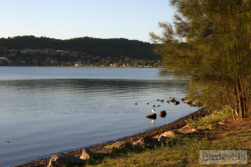things to do lake macquarie