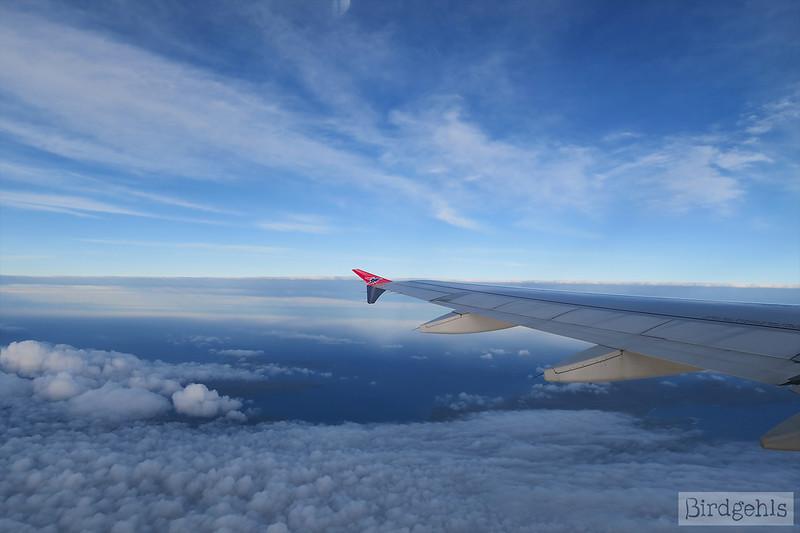 #flygskam
