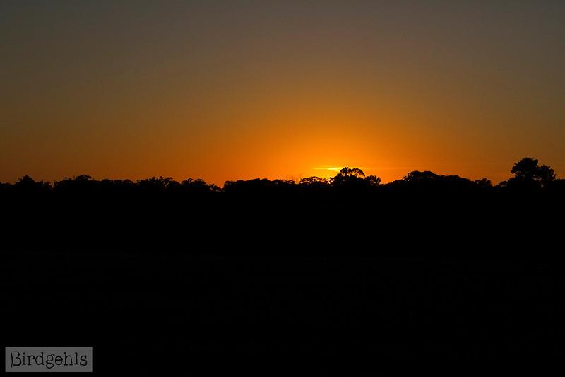 sunrise dubbo