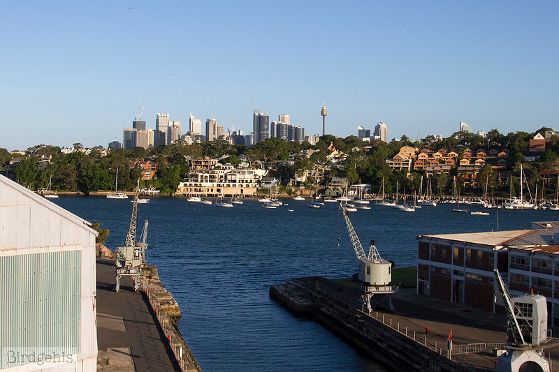 cockatoo island sydney date ideas