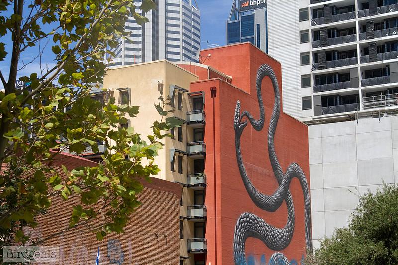 snake mural roa perth