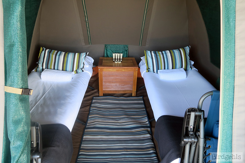 inside cockatoo island glamping tents