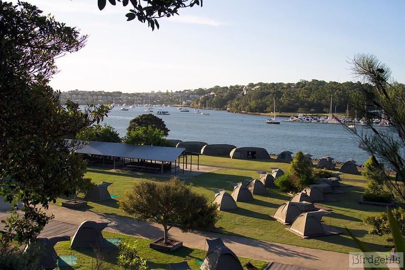 cockatoo island campsite