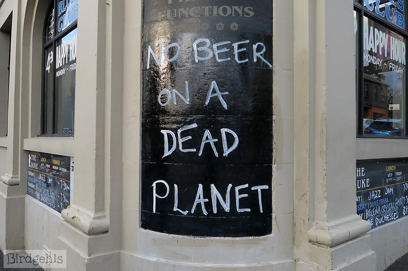 no beer sign tassie