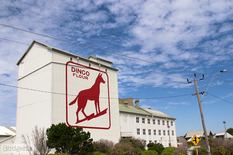 dingo flour perth