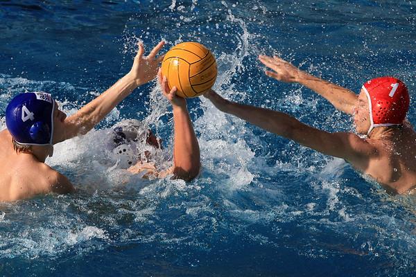 Sport Wasserball Herren SV Basel  U17 Saison 2009