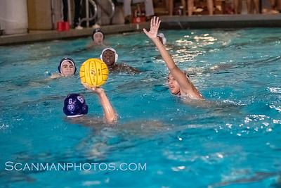 VarsityWaterpoloPingry 2019-12