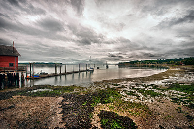 Low Tide at Coupeville Wharf: Whidbey Island, Washington
