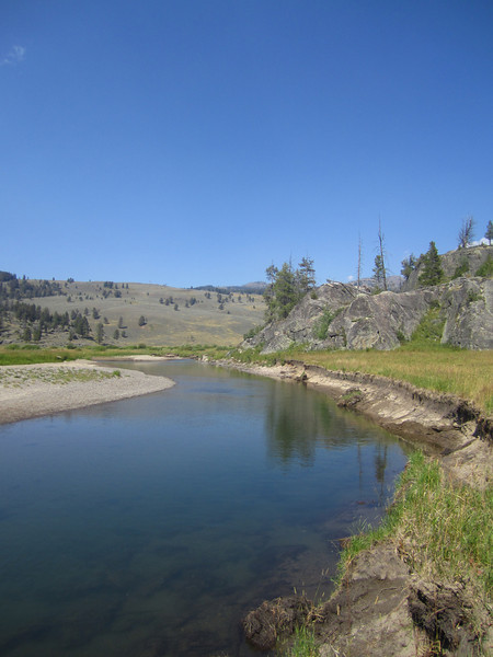 First Meadow Slough Creek<br /> Photo: Josh Edwards