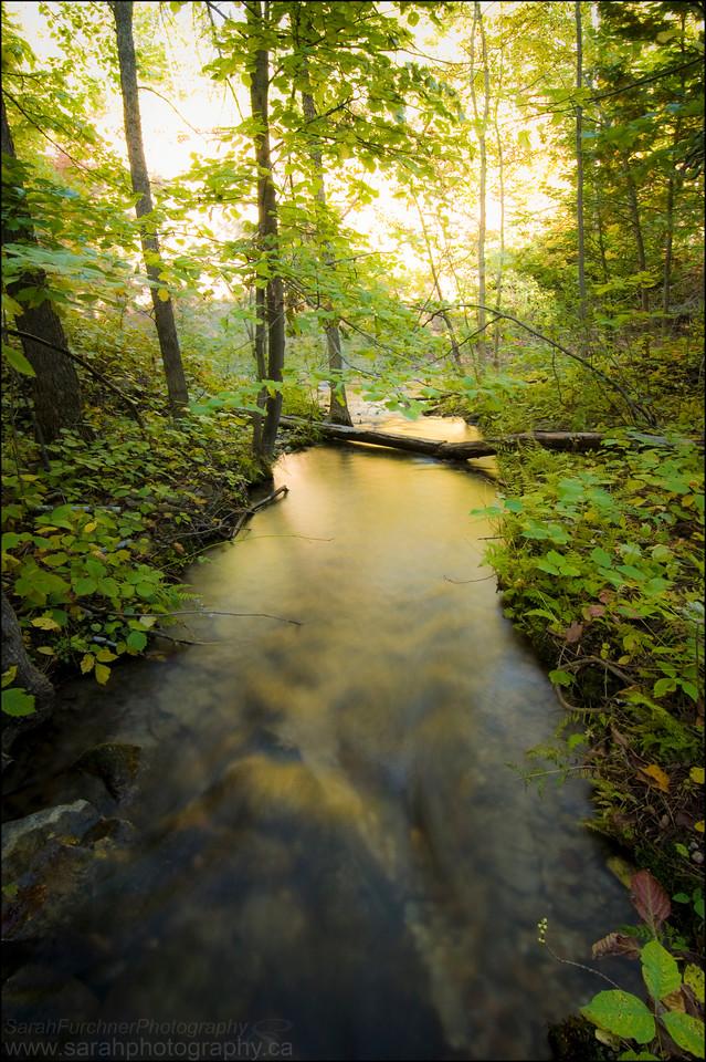 Bridal Veil Falls. Manitoulin Island, Ontario.