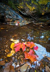 Killarney Provincial Park. Killarney, Ontario.