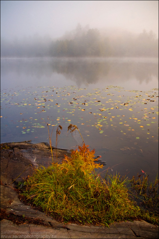Balsam Lake, Killarney Provincial Park, Ontario.