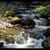 Still Creek