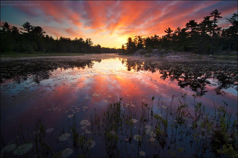 Lighthouse Lake. Killarney, Ontario