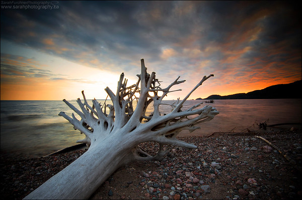Agawa Bay, Lake Superior Provincial Park, ON.