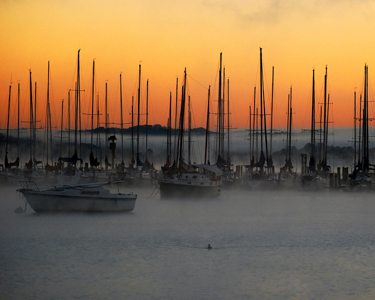 Masts at Dawn<br /> <br /> One of my favorite photos. I have a large framed print of this one in the bedroom. If you look behind the boats, the trees seem to be floating on the mist. The sun was not up yet so that is why you get the striking black and white imagery of the boats in the water against the color of  the pre-dawn sky.