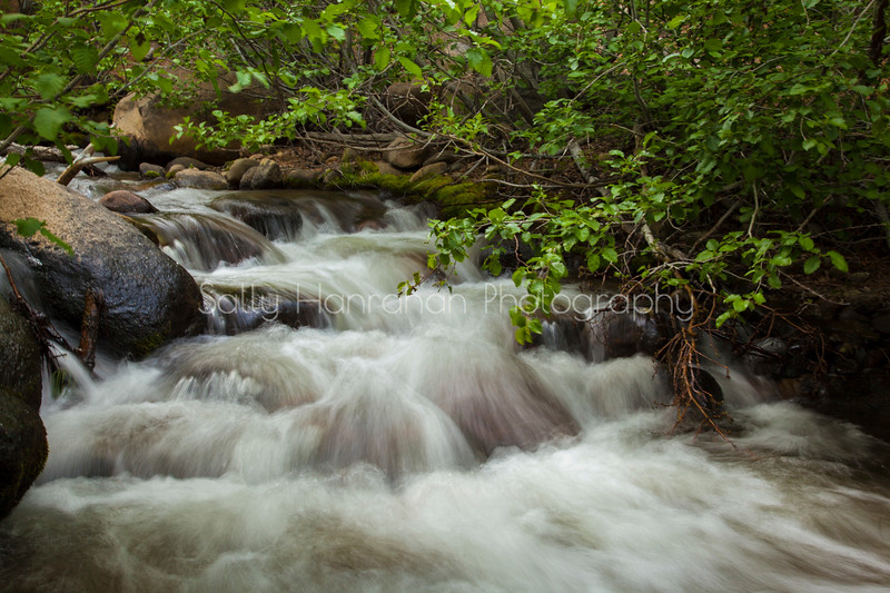 Galena Creek #3