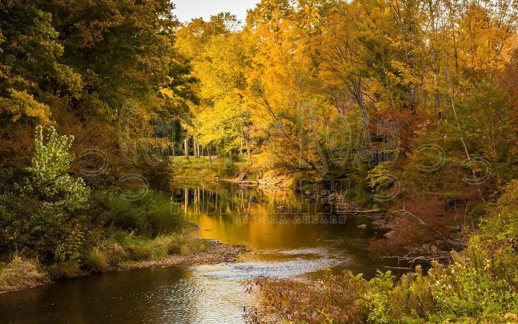 Potato Creek in the fall. Galico Crossroad, Smethport, Pennsylvania